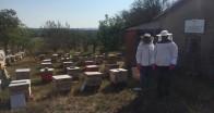 Genç çiftçi bal hasadını gerçekleştirdi